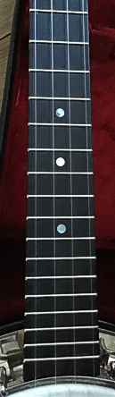 Barnes Abbott Monarch copy ukulele banjo - frets