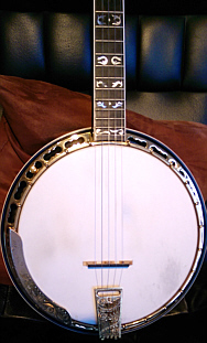 Ode banjo - body