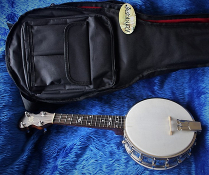 Tone King banjolele - with case